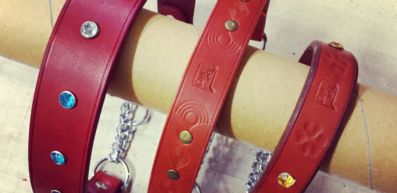 Colliers martingales simples avec déco pour chiens